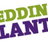 Thumbnail image for Bedding Plants – Thanks!